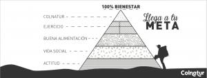 Project_Benestar_10